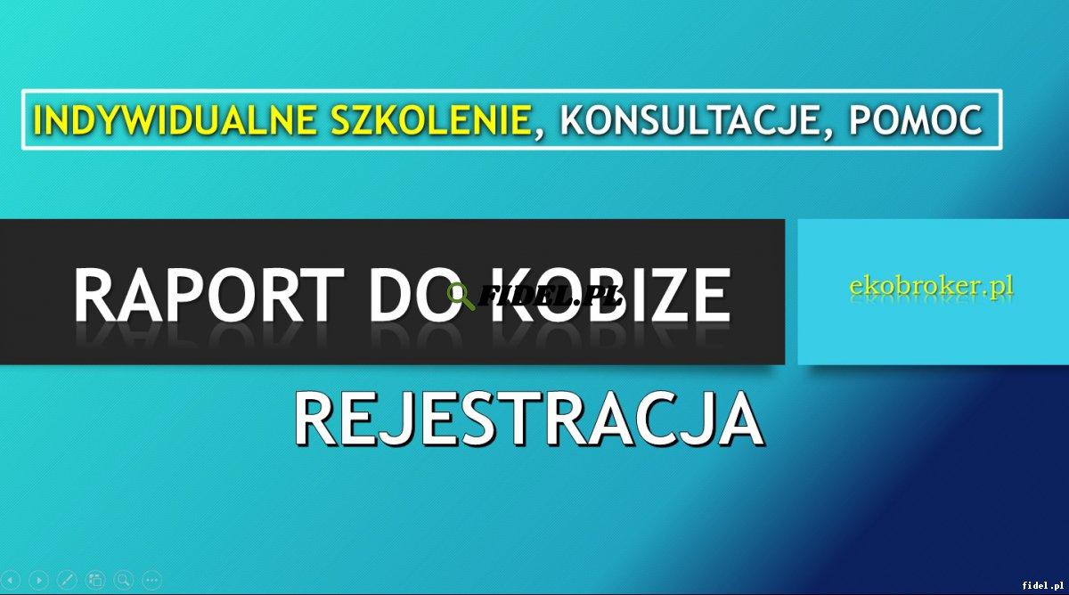 Szkolenie Raport do Kobize, cennik, tel. 502-032-782,  Indywidualne, w siedzibie firmy, wewnętrzne, Ćwiczenia, Warsztaty, cena , sprawozdanie
