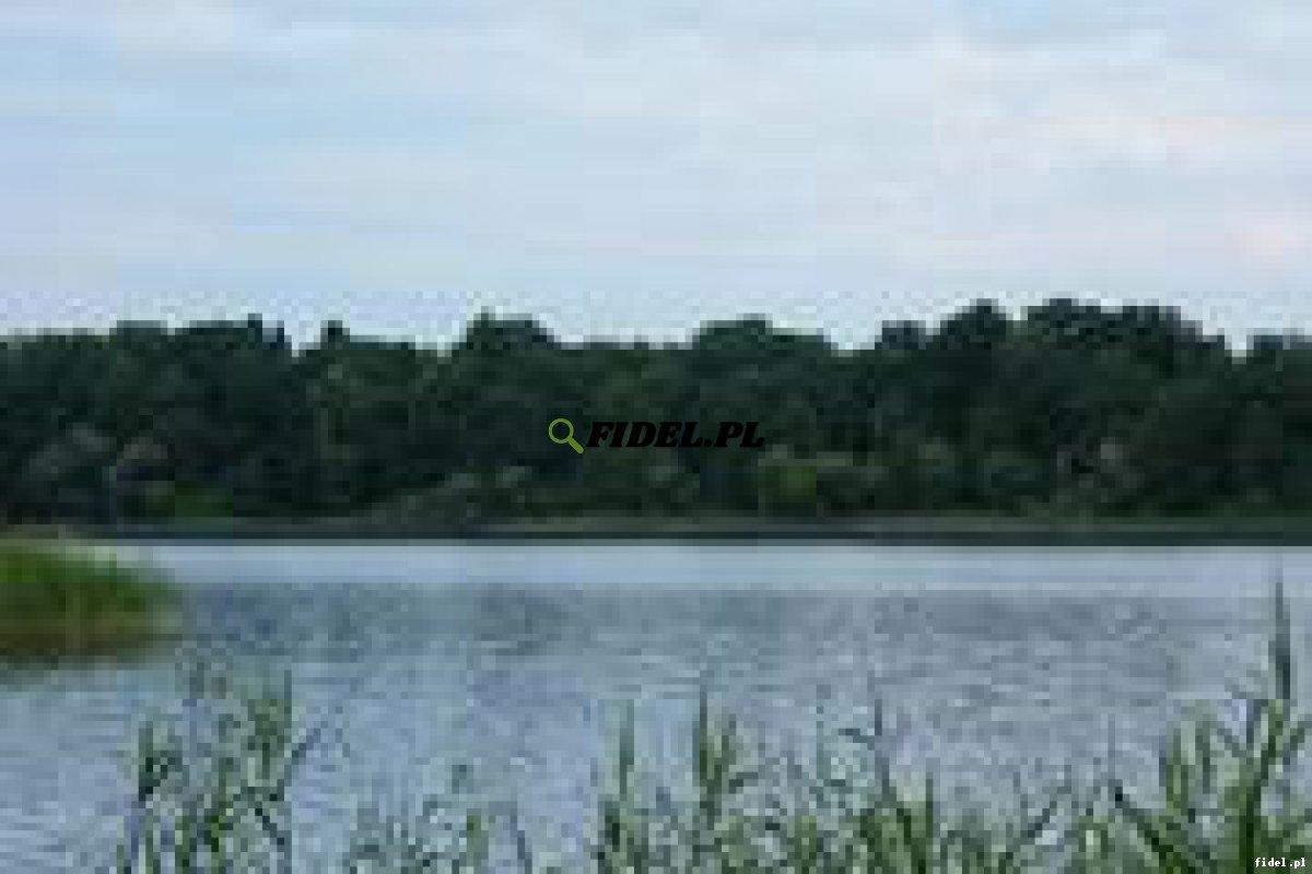 Sprzedam grunty nad jeziorem Woświn z dostępem do wody