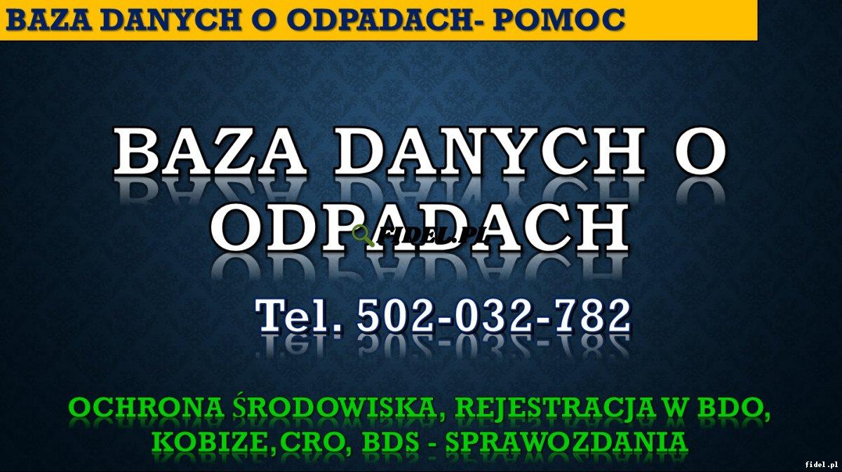BDO, pomoc, tel. 504-746-203, wypełnienie wniosku. Obsługa firmy, cena. Porady, Pytania, problemy, rozwiązanie trudności przy wypełnianiu. Obsługa