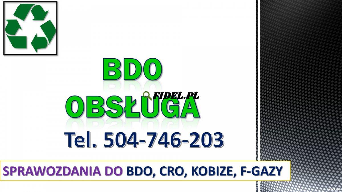 Rejestracja w BDO, tel. 504-746-203. Warszawa. Zgłoszenie i wpis firmy do bazy. Baza Danych o Odpadach, pomoc oraz konsultacje.