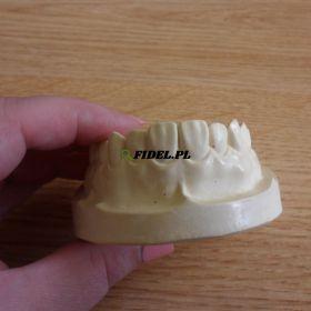 Współpraca ze stomatologiem
