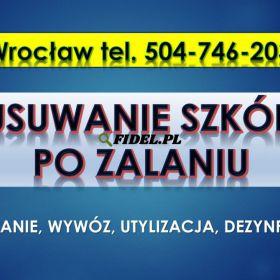 Usuwanie szkód po zalaniu, cennik tel. 504-746-203, Wrocław. Dezynfekcja Sprzątanie odchodów, zabrudzeń po fekaliach. Sprzątanie po wybiciu toalety