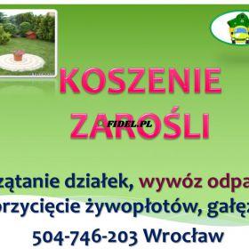 Koszenie działki, tel 504-746-203, przycięcie żywopłotu, tui, ogrodnik, cena Usługi koszenie zarośli, działki, trawy, wycięcie gałęzi i wywóz.