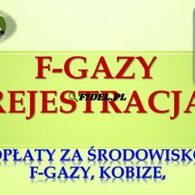 Zgłoszenie do CRO, cena, Warszawa, Łódź, Kraków, Wrocław, Poznań, Gdańsk, Szczecin, Bydgoszcz, Lublin, Katowice, Białystok, Częstochowa, Gdynia