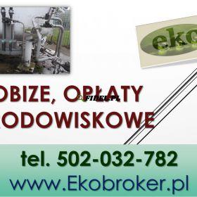 Rozliczenie opłat środowiskowych,  kobize, Olsztyn, Rzeszów, Ruda Śląska, Rybnik, Wałbrzych, Tychy, Dąbrowa Górnicza, Płock, Opole,Koszalin, Legnica