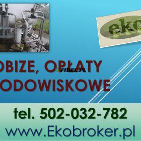 Raport do Kobize, sprawozdanie, cena Warszawa, tel 502-032-782 Raporty Kobize, rejestracja wniosku, obsługa firm. Wprowadzanie danych do Kobize,