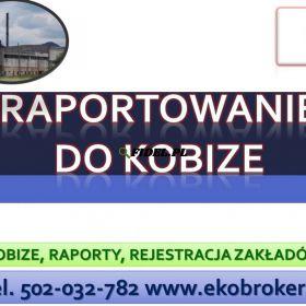 Raportowanie do Kobize, cena tel,wykonanie zgłoszenia, Jakie kary za nie złożenie raportu. Kobize kara, kogo dotyczy ?