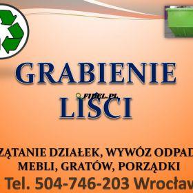 Grabienie liści, cena tel 504-746-203, wywożenie liści, Wrocław.  Wywóz liści we Wrocławiu, sprzątanie i grabienie liści. Wywiezienie liści z ogrodu