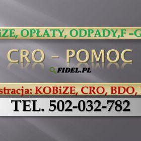 Zgłoszenie do CRO, Warszawa, Łódź, Kraków, Wrocław, Poznań, Gdańsk, Szczecin, Bydgoszcz, Lublin, Katowice, Białystok, Częstochowa, Gdynia, Sosnowiec.