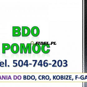 BDO obsługa. Tel. 504-746-203, Zgłoszenie. Warszawa, Łódź, Kraków, Wrocław, Poznań, Gdańsk, Szczecin, Bydgoszcz, Lublin, Katowice, Białystok, Radom