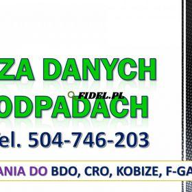 Pomoc zdalna BDO, tel. 504-746-203. Szkolenie online, obsługa firm.   Wykonanie raportu w systemie. Sprawozdanie z odpadów w BDO.