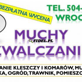 Likwidacja much dezynfekcja, tel. 504-746-203, Wrocław. Zwalczanie insektów, cennik