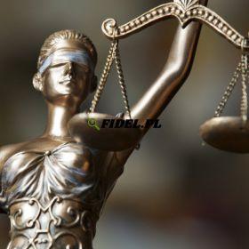 Adwokat kościelny, unieważnienie małżeństw kościelnych, rozwód kościelny