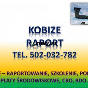 Raportowanie do Kobize cena. tel. 502-032-782. Zgłoszenie do Kobize, obsługa firm