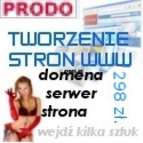 Wykonanie strony internetowej www Poznań tanio cena 298 zł. (brutto) !